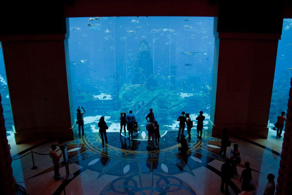Atlantide: la città hi-tech che vive sott'acqua