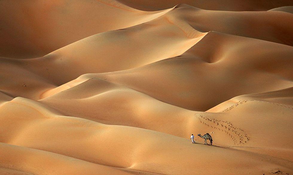 Un uomo e un cammello