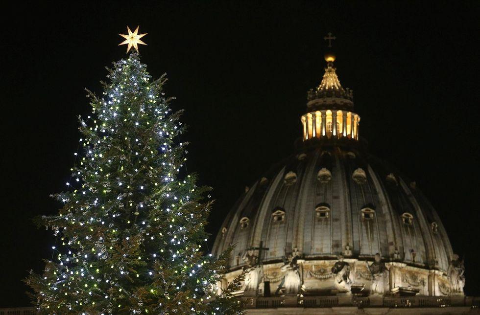 Illuminato l'albero di Natale in San Pietro, le foto