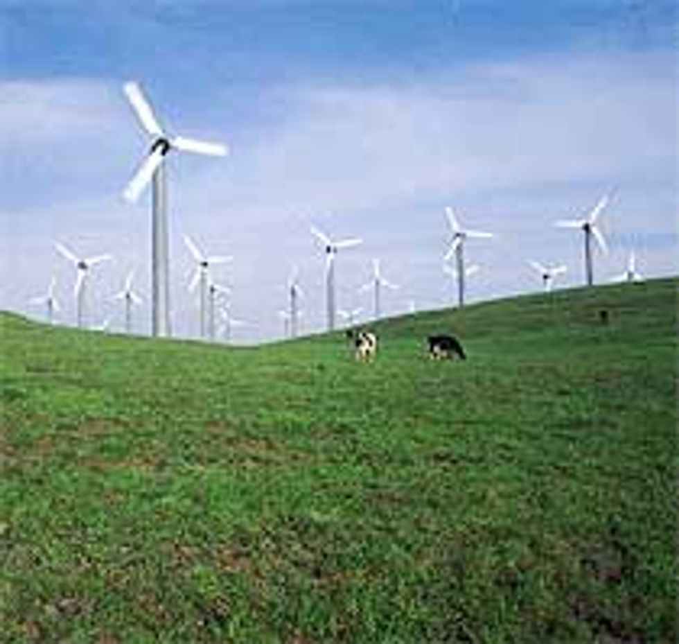 Energia rinnovabile, prodotti più trasparenti con l'etichetta