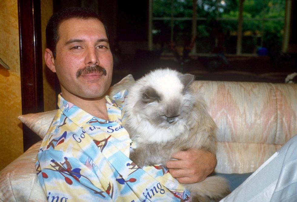 Freddie Mercury: il nuovo film-documentario