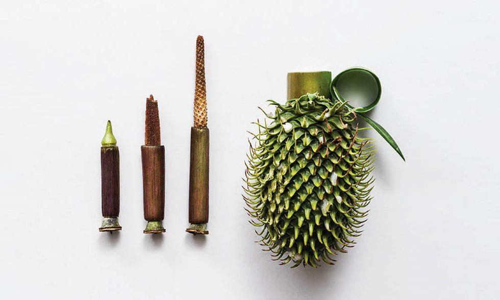 Per Sonia Rentsch la natura è l'arma più efficace