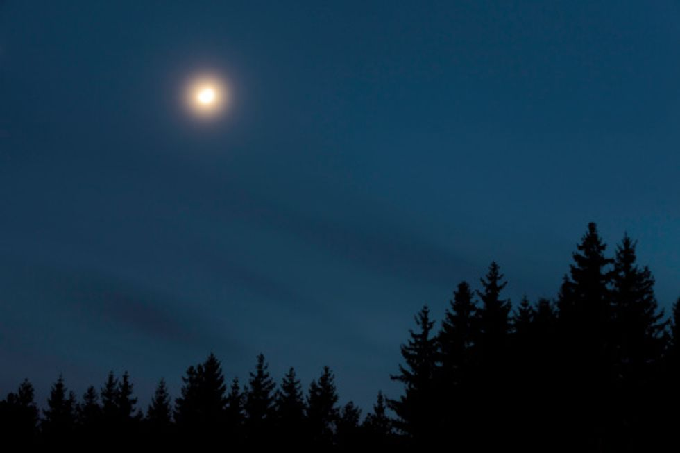 Claude Debussy: il Chiaro di Luna nei film - video