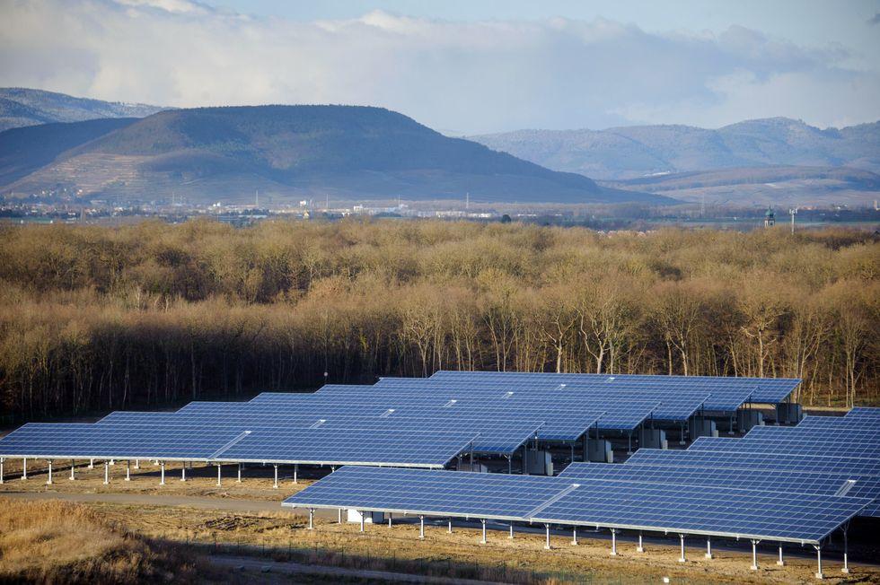 Green Economy, il tirocinio si fa all'estero