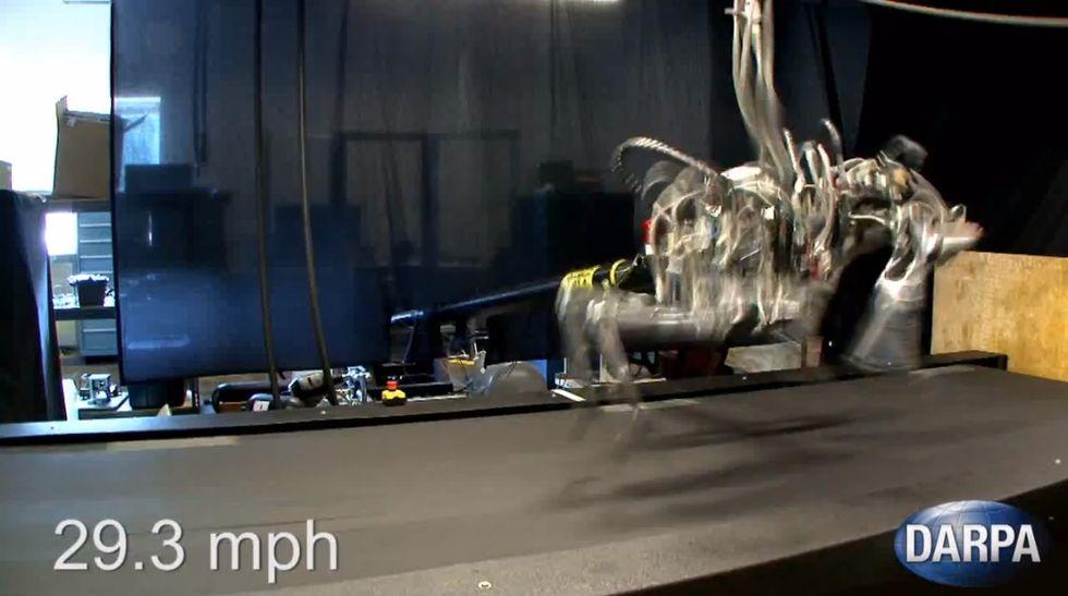 Cheetah, il robot che corre più veloce di Bolt