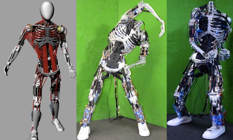 Kenshiro: il robot che ha i muscoli