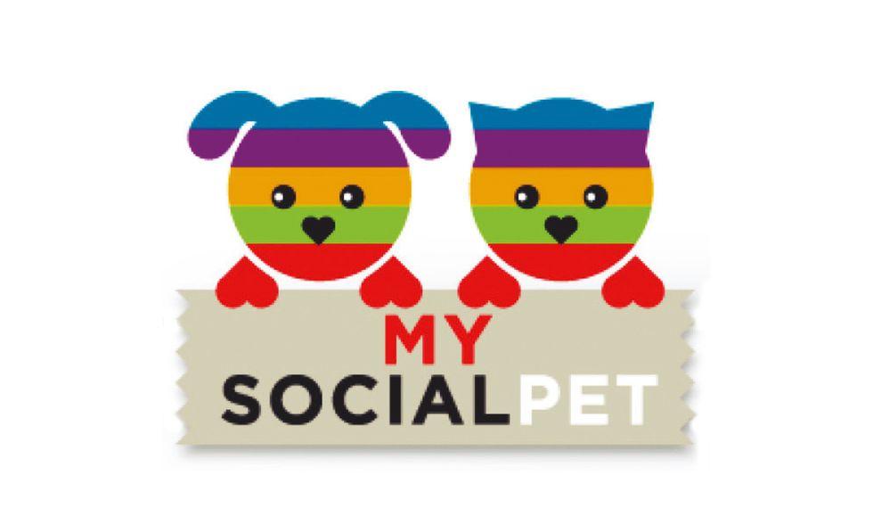 Mysocialpet, il sito per cani e gatti