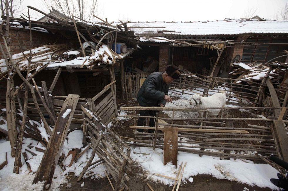 """Dopo lo scandalo della melamina, i cinesi allevano i figli con """"latte fatto in casa"""""""