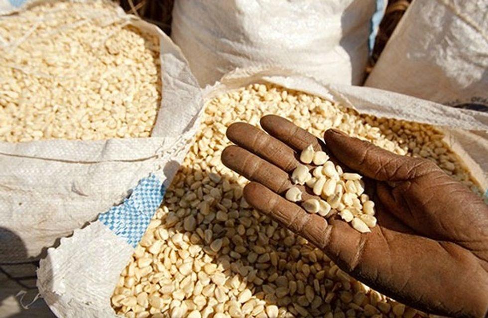 World Food Day: il cibo c'è, mancano i mezzi per comprarlo