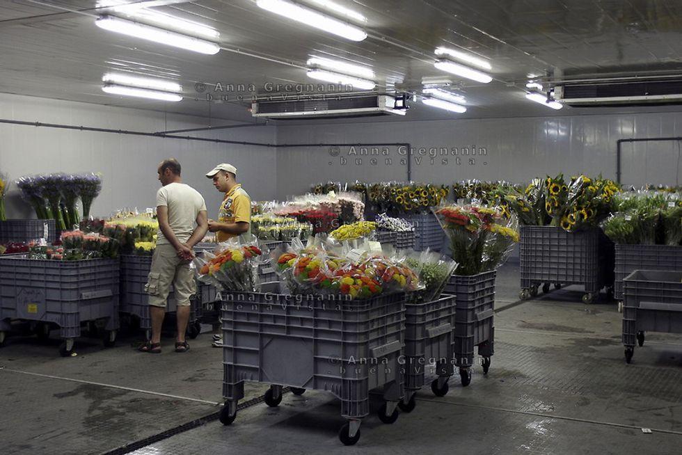 Sanremo: a rischio la casa dei fiori?
