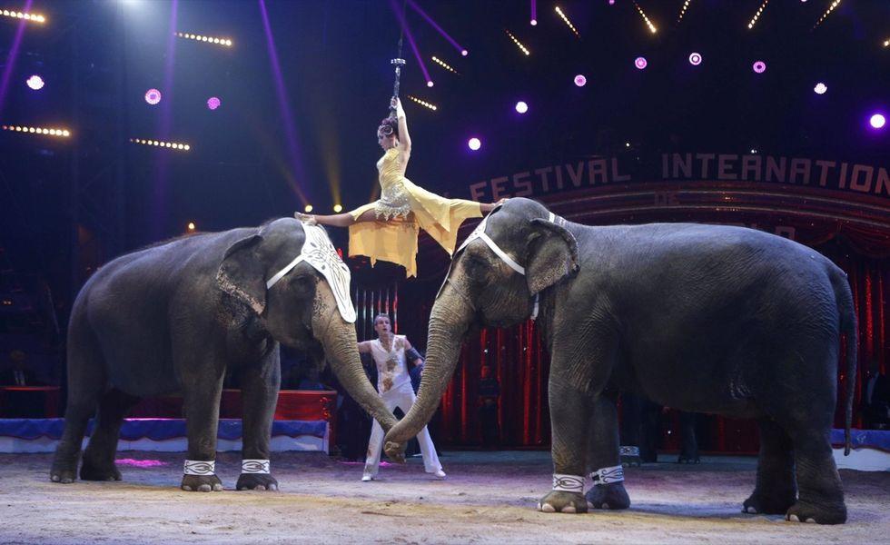 Lo show del 39° Festival internazionale del Circo di Montecarlo