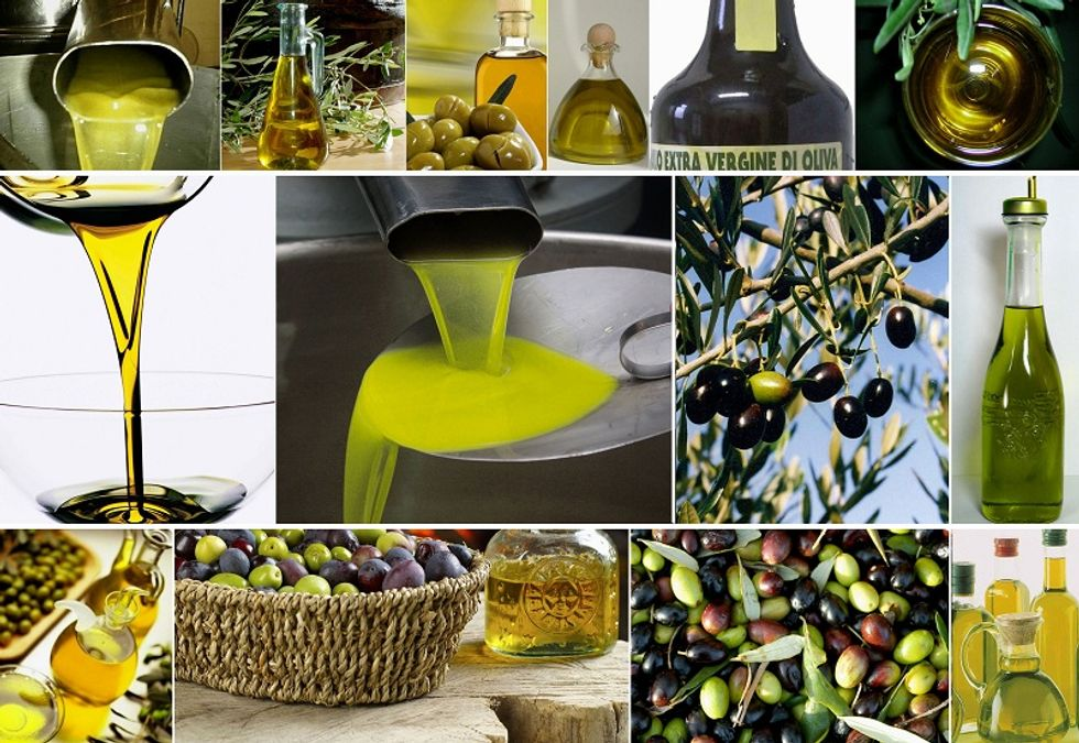 Investigating on Italian olive oil obsession in China