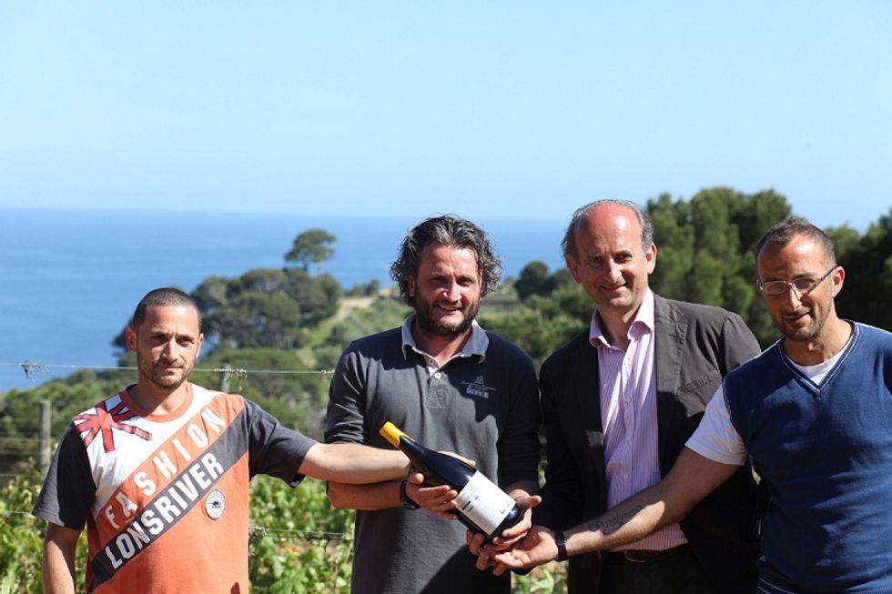 Gorgona, Frescobaldi's wine made by prisoners is finally on sale