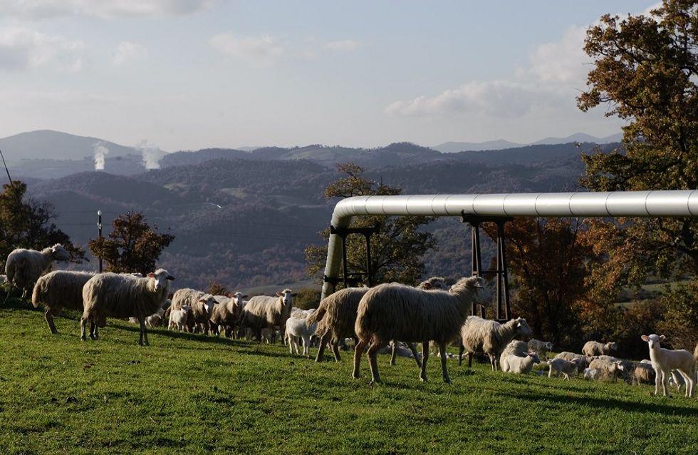 Enjoy Tuscany among horses and cowboys