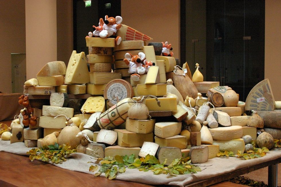 Welcome to CaseoArt, the first Italian cheese competition