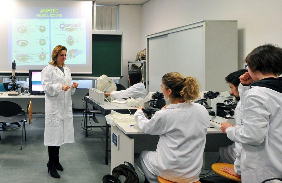 Milan and Rome among Top Young Universities