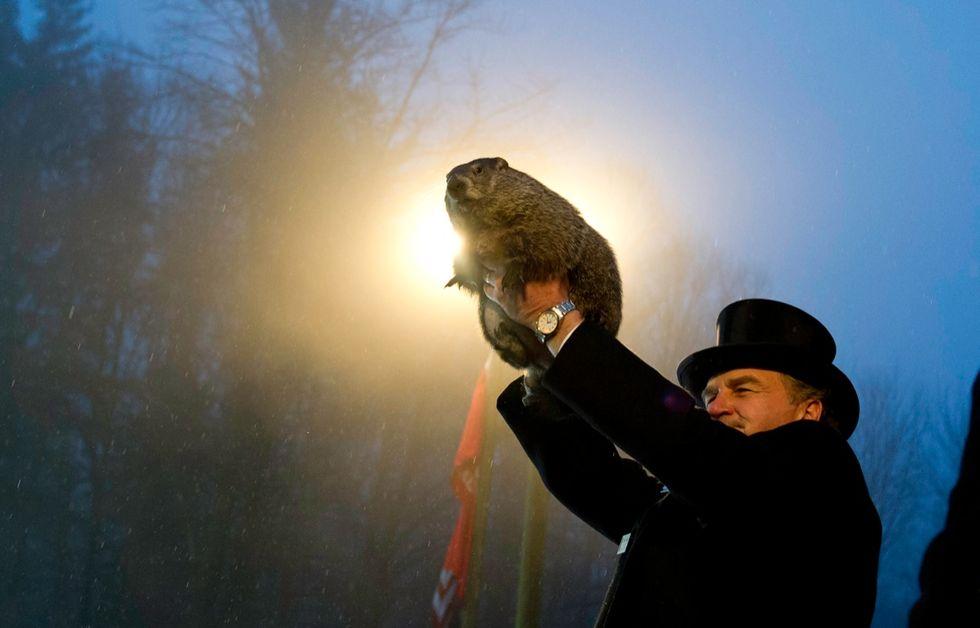 È il giorno della marmotta, e l'inverno sarà ancora lungo