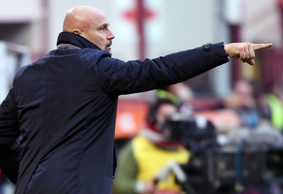 Udinese, Stefano Colantuono è il nuovo allenatore
