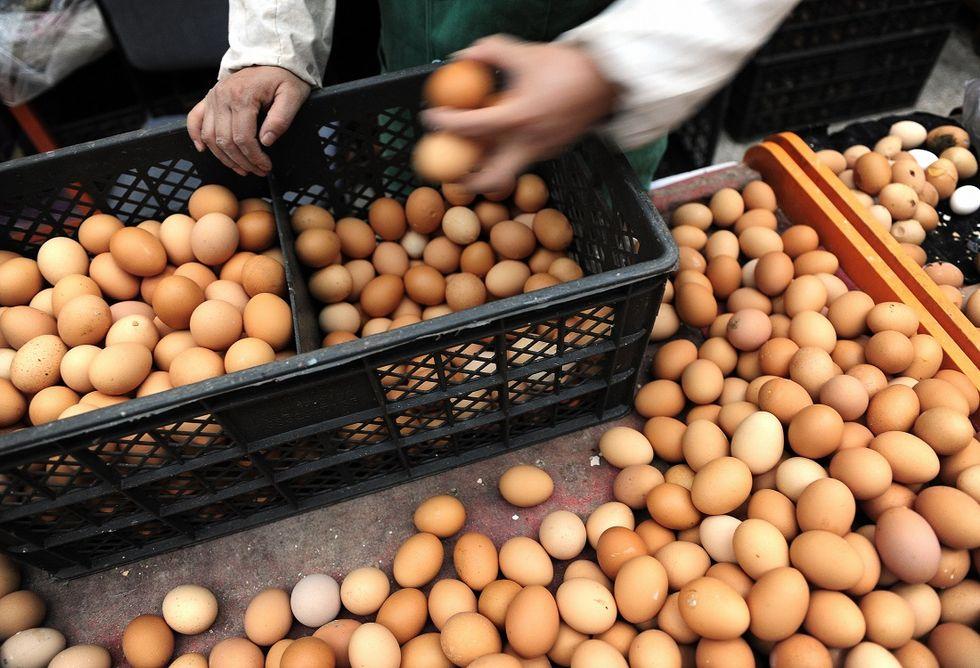 eggs-market
