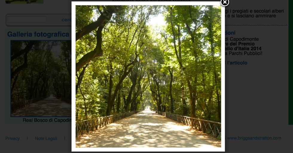 Sono nella zona di Napoli i parchi più belli d'Italia