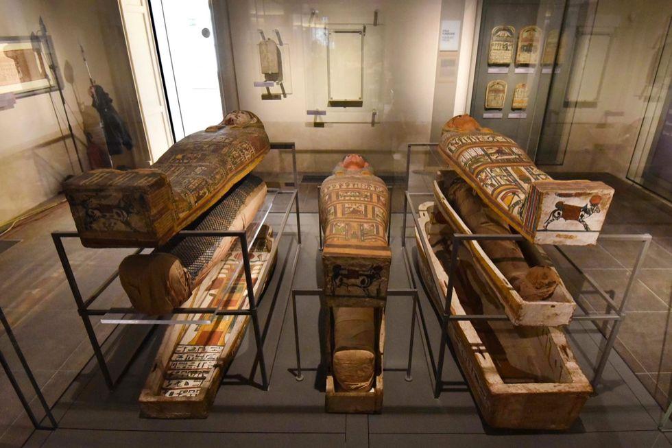 Il Nuovo Museo Egizio di Torino - Le foto