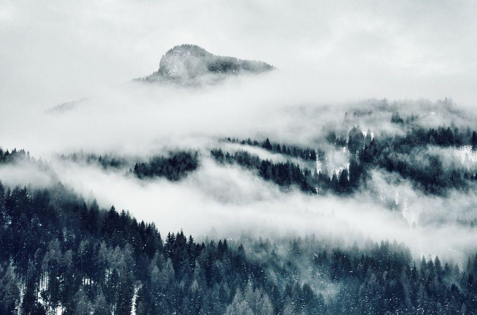 Il primo inverno Philip Blom