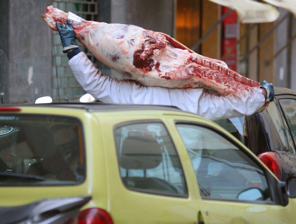 carne ansa