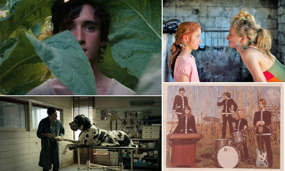 I 10 film italiani più belli del 2018