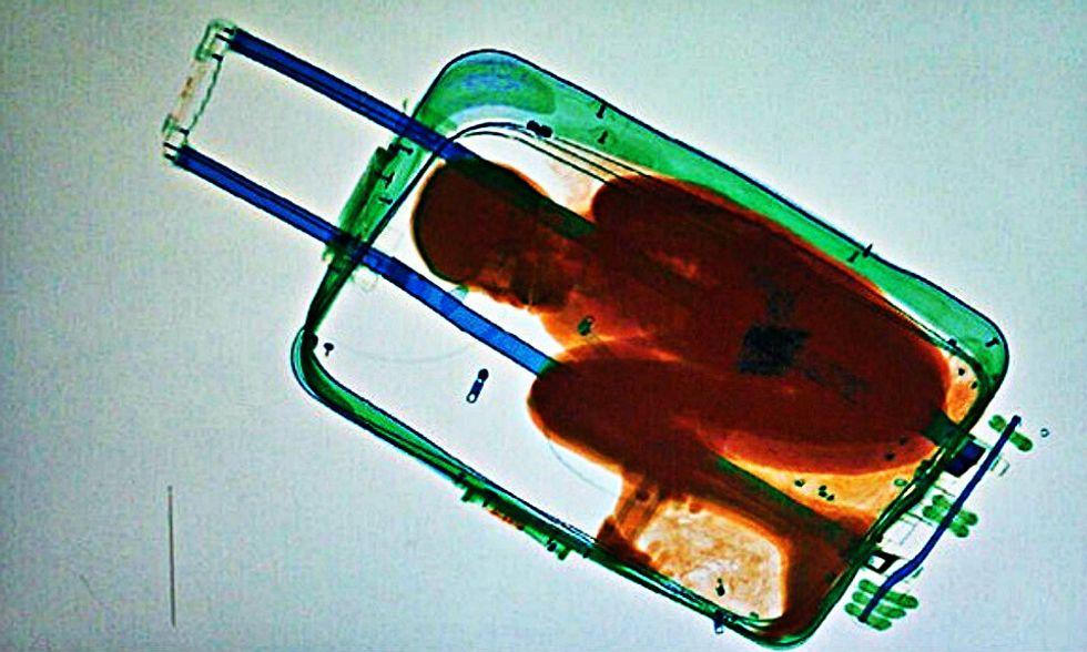 Bambino in una valigia per attraversare il confine