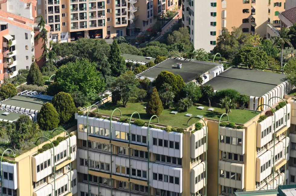 """Francia """"green"""", d'ora in poi solo case con giardino (sul tetto)"""