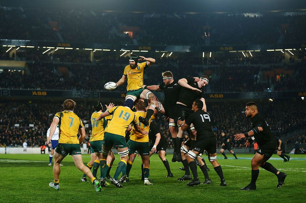 all blacks - australia finale rugby
