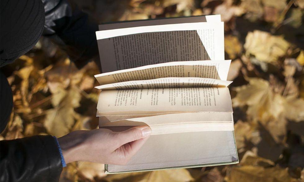libri-novembre