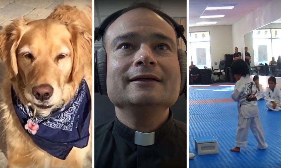 I 10 video virali più divertenti del 2015