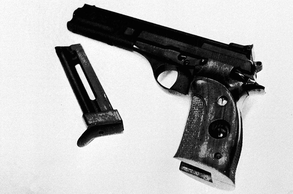 Ansa pistola mostro