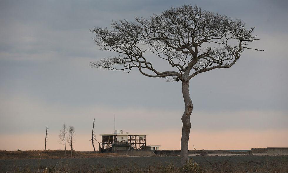 Fukushima, 5 anni dopo il disastro nucleare