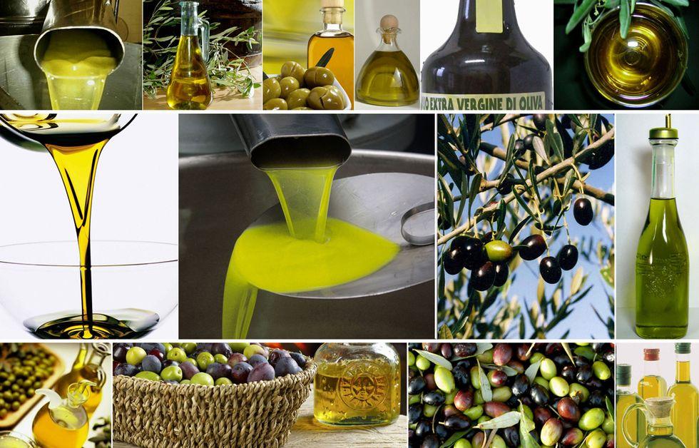 Olio tunisino: i rischi e i consigli per acquistare extravergine di qualità