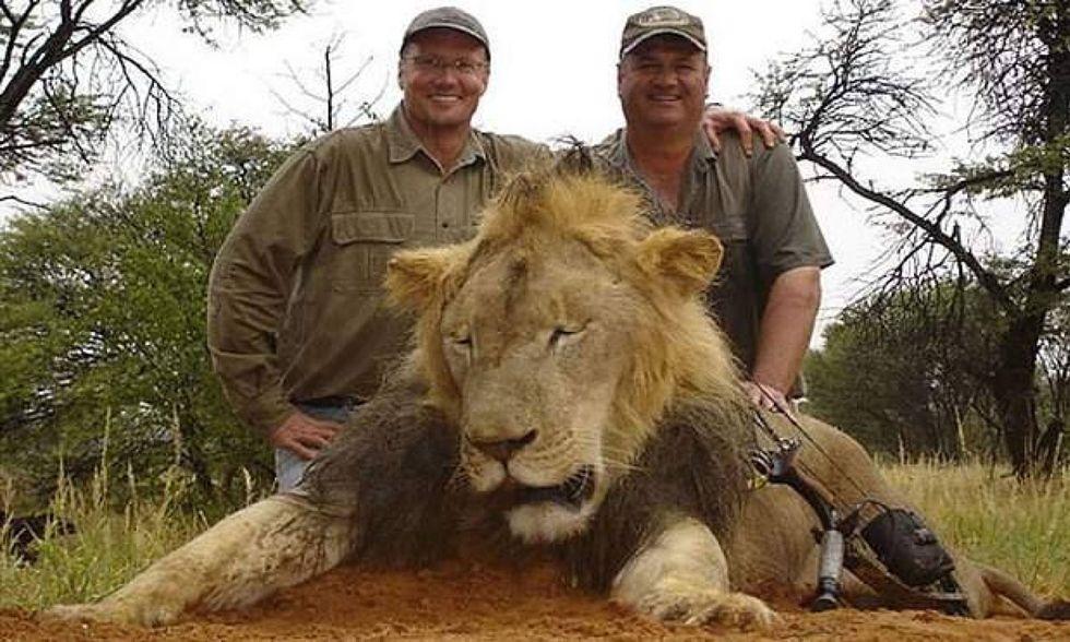 Ilwalter-palmer-cecil-leone-zimbabwe