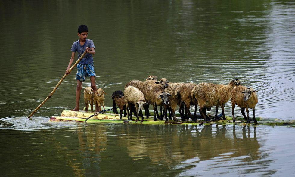 India, alluvioni nell'Assam