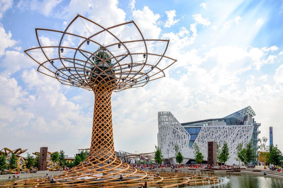 albero-della-vita-expo