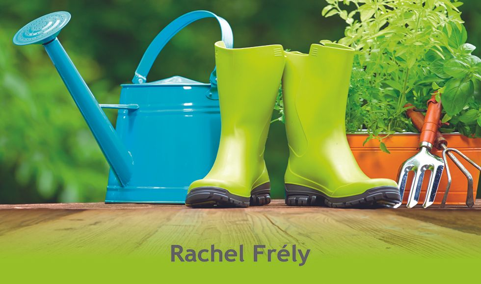 Pollice green di Rachel Frély