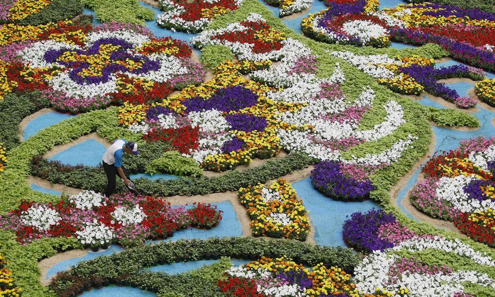 Festa dei fiori a Medellin