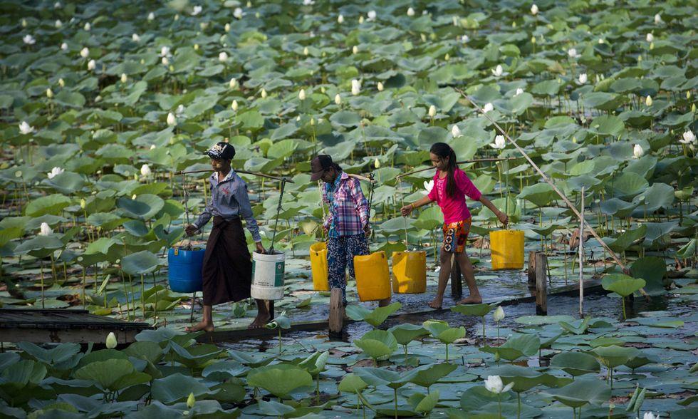 Vita quotidiana in Birmania