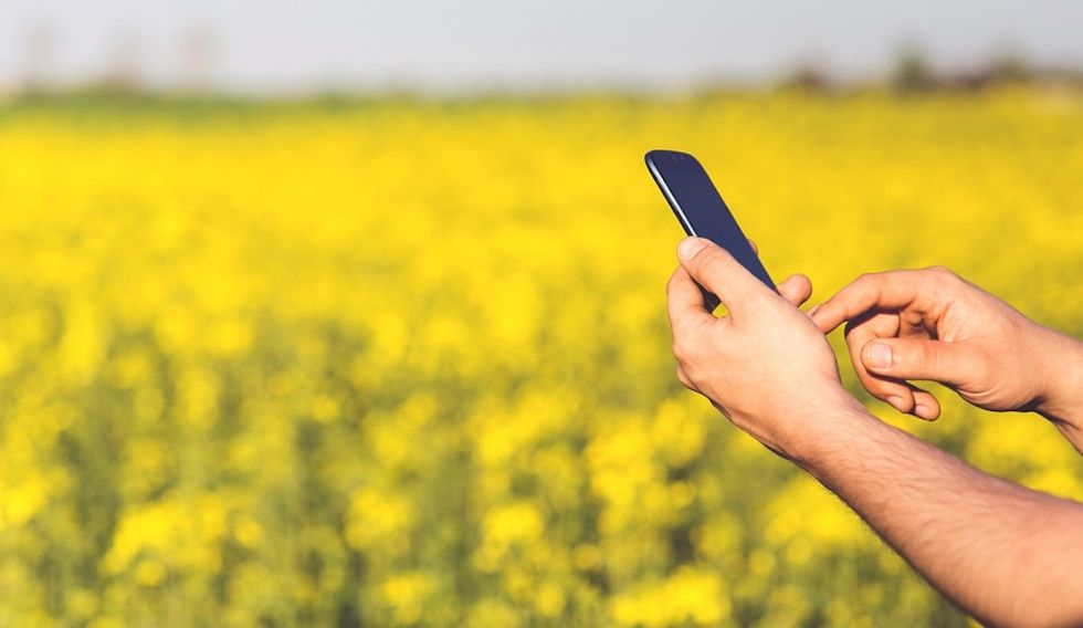 smartphone giallo
