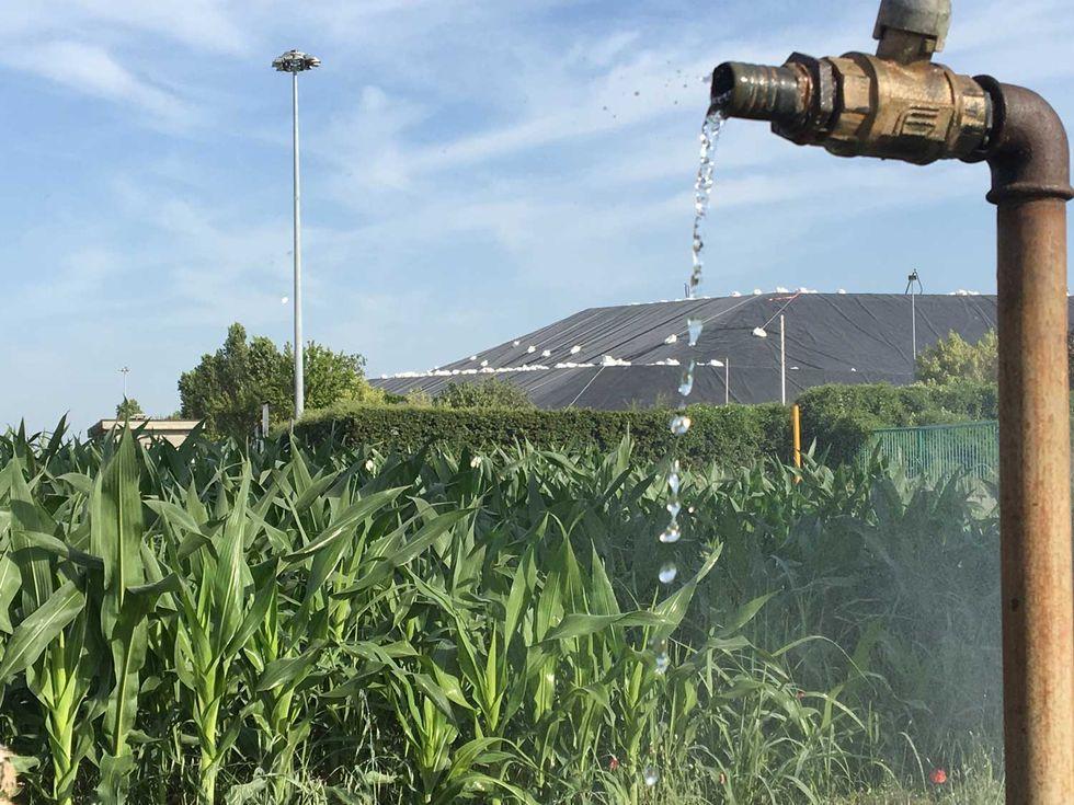 foto-rifiuti-Montichiari