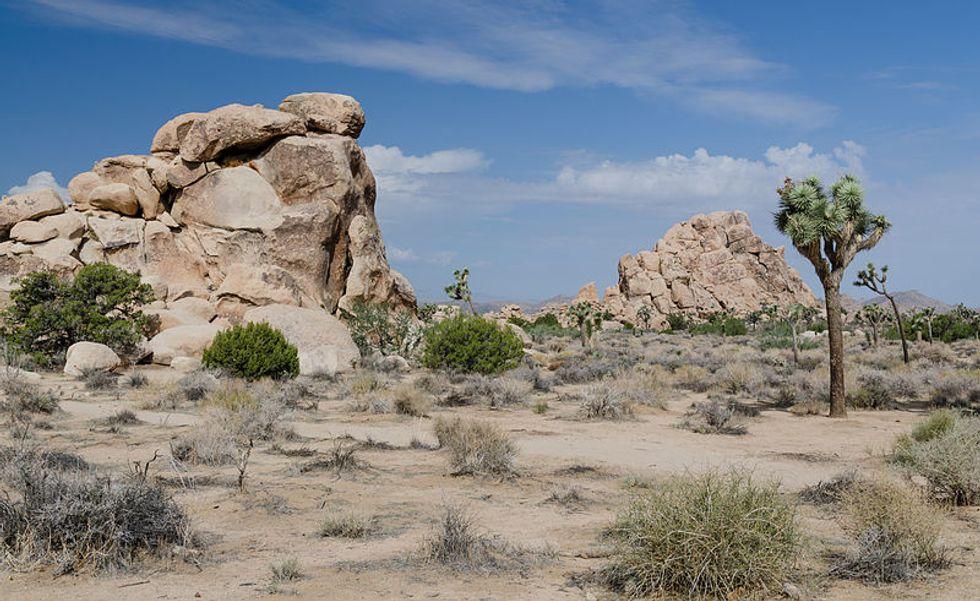 Vasta, Absolutely Nothing. Storie e sparizioni nei deserti americani