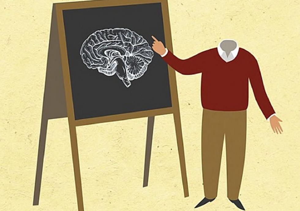 Vincent, Qualche breve lezione sul cervello