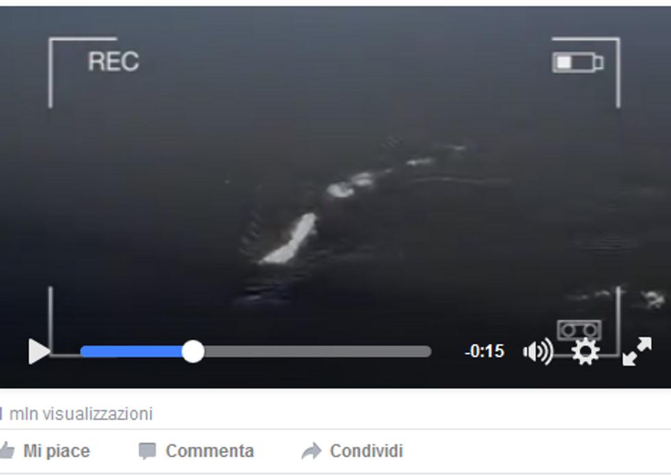 """Il mistero del """"mostro"""" di Loch Ness in Alaska"""