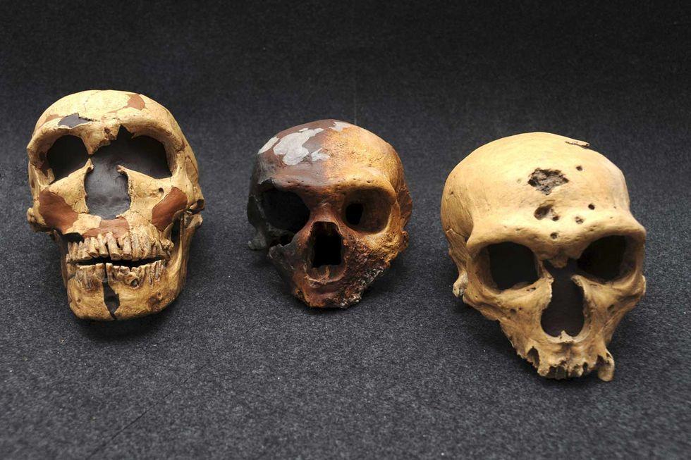 uomo-Neanderthal-cause-estinzione