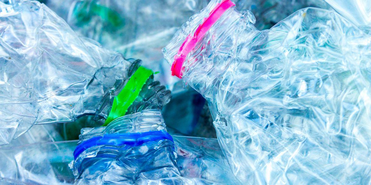 Materiali compostabili e carta certificata, la svolta anti-plastica di Misura