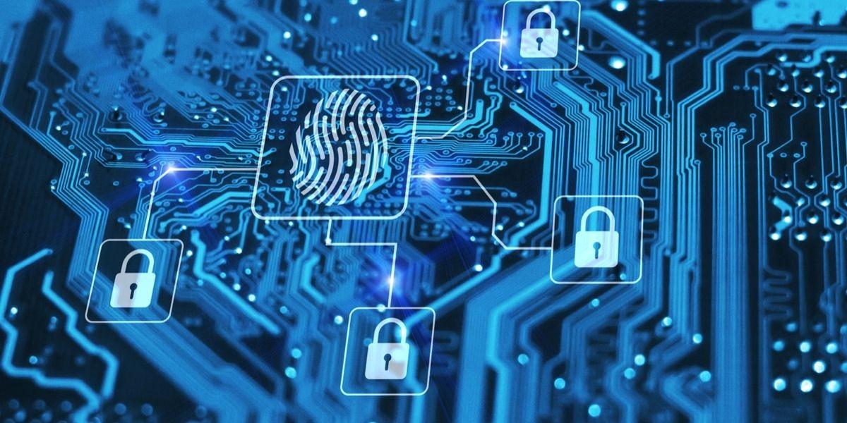 Noi complici inconsapevoli del cyber crimine